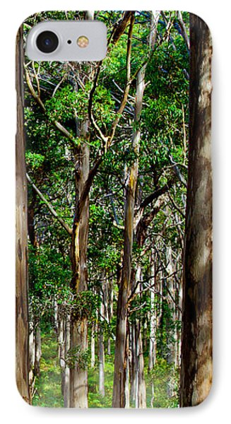 Mist In The Forest IPhone Case by Az Jackson