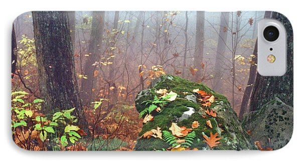 Misty Autumn Woodland Phone Case by Thomas R Fletcher