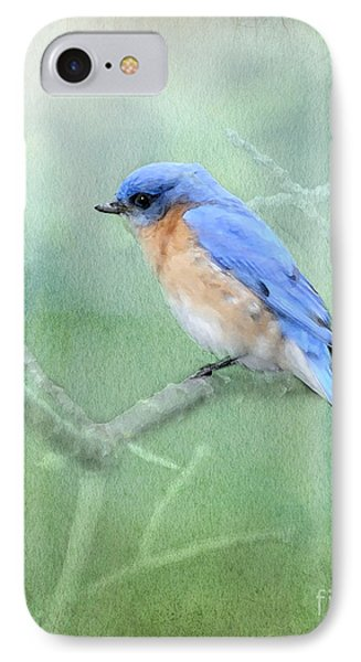 IPhone Case featuring the photograph Misty Blue by Betty LaRue