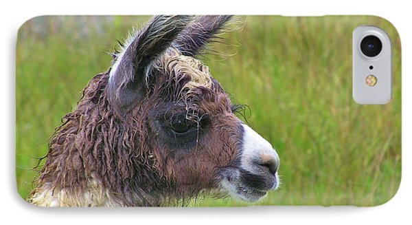 IPhone Case featuring the photograph Misty Macchu Picchu Llama by Michele Penner