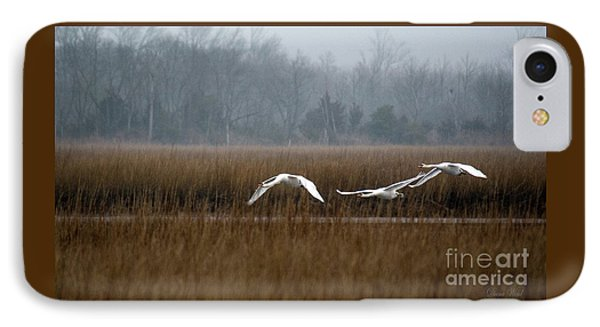 Misty Mute Swans Soaring South Jersey Wetlands Phone Case by Diana Wind