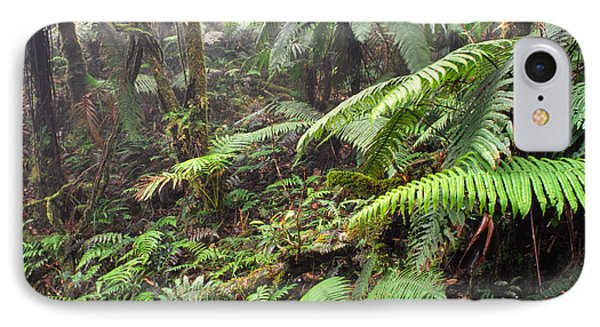 Misty Rainforest El Yunque Phone Case by Thomas R Fletcher