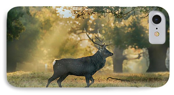 IPhone Case featuring the photograph Misty Walk by Scott Carruthers