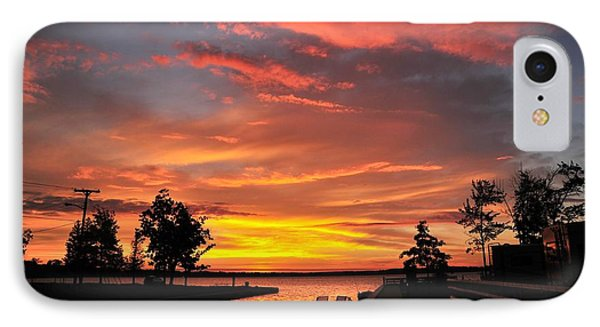 Mitchell State Park Cadillac Michigan IPhone Case by Terri Gostola