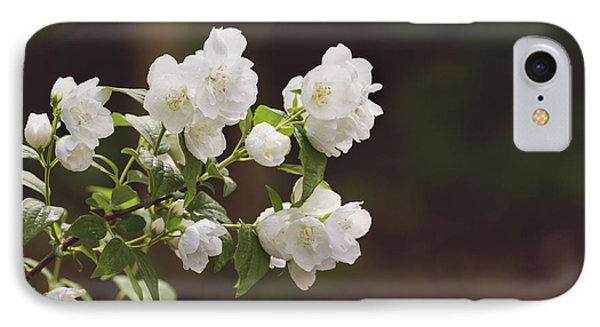 IPhone Case featuring the photograph Mock Orange Blossoms by Kim Hojnacki