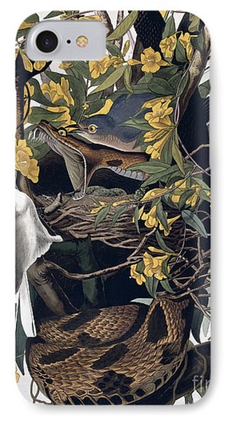 Mocking Birds And Rattlesnake IPhone 7 Case by John James Audubon