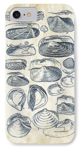 Mollusks - 1842 - 03 IPhone Case by Aged Pixel