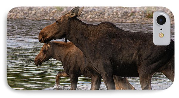 IPhone Case featuring the photograph Mom And Baby Moose River Crossing by Mary Hone