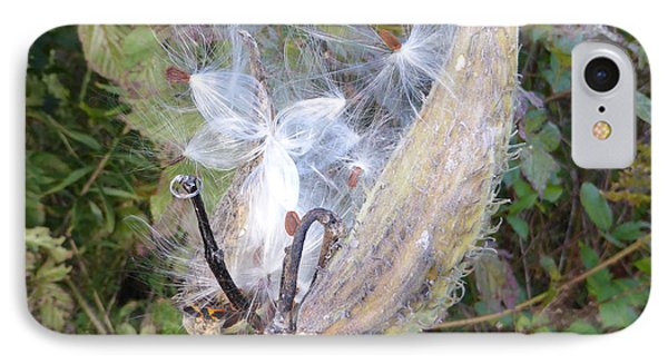 IPhone Case featuring the photograph Moment In The Life Of A Milkweed by Joel Deutsch