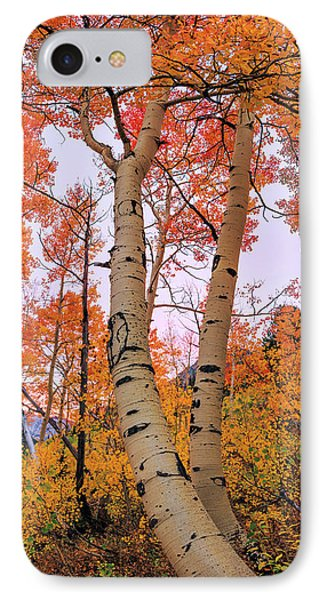 Moments Of Fall IPhone Case
