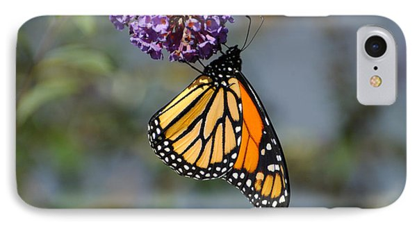 Monarch 2011 F IPhone Case
