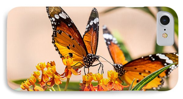 Monarch Butterfly IPhone Case by Arik Baltinester