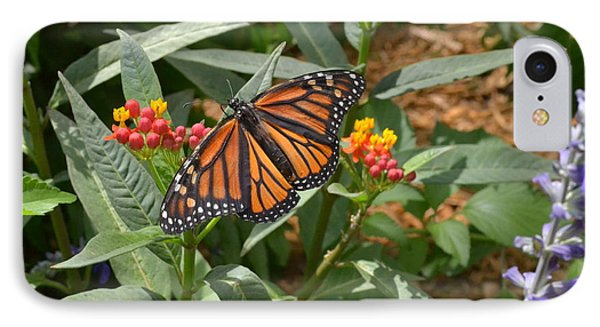 IPhone Case featuring the photograph Monarch Butterfly by Carol  Bradley