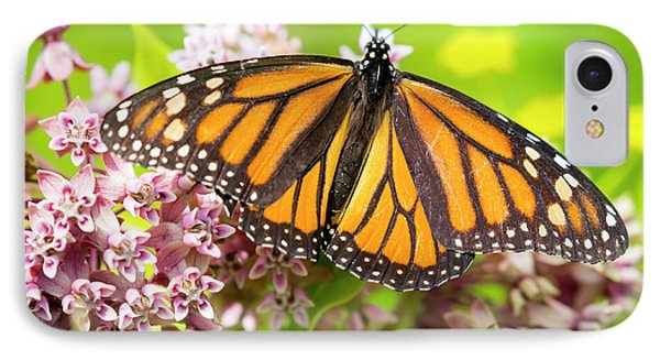 IPhone Case featuring the photograph Monarch Butterfly Closeup  by Ricky L Jones
