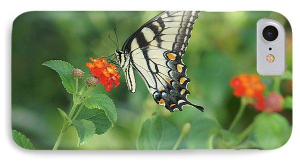 Monarch Butterfly IPhone Case by Debra Crank