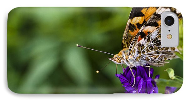Monarch Butterfly IPhone Case by Marlo Horne