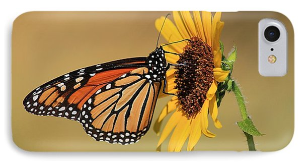 IPhone Case featuring the photograph Monarch Butterfly On Sun Flower by Sheila Brown