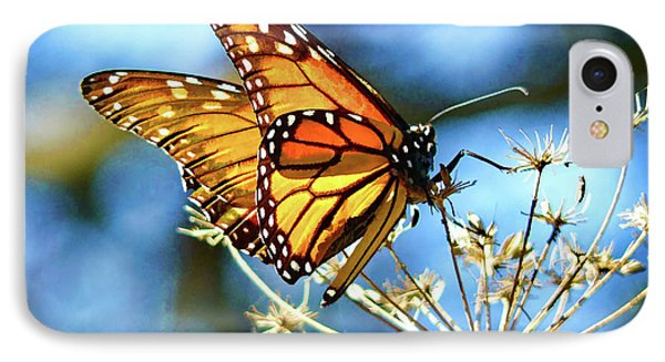 Monarch Butterfly On Wild Plant II IPhone Case