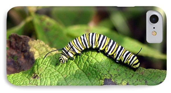 Monarch Caterpillar IPhone Case