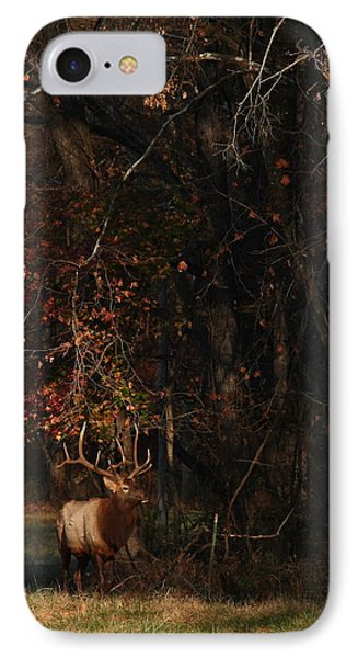 IPhone Case featuring the photograph Monarch Joins The Rut by Michael Dougherty