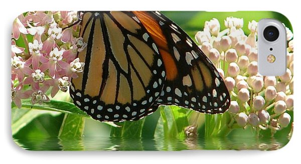 Monarch Lunch IPhone Case by Rick Friedle