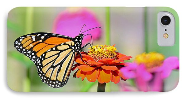 IPhone Case featuring the photograph Monarch On A Zinnia by Rodney Campbell