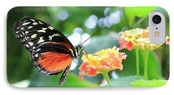 Monarch On Flower IPhone Case by Angela Murdock