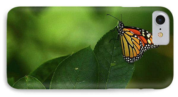 IPhone Case featuring the photograph Monarch On Leaf by Ann Bridges