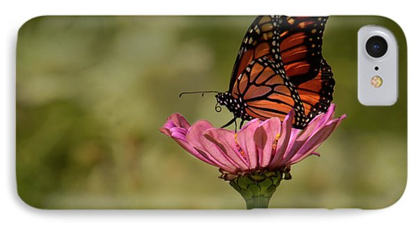 IPhone Case featuring the photograph Monarch On Pink Zinnia by Ann Bridges