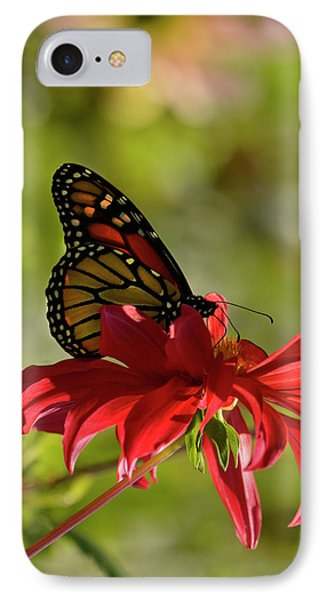 IPhone Case featuring the photograph Monarch On Red Zinnia by Ann Bridges