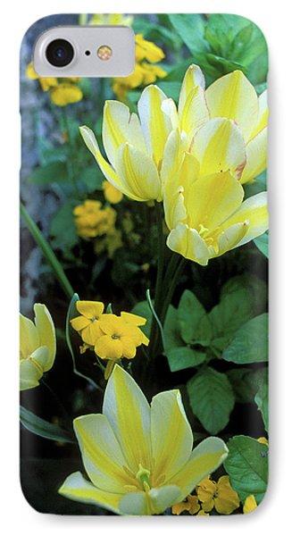 Monet's Fancy Tulips Phone Case by Kathy Yates