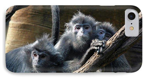 Monkey Trio Phone Case by Karol Livote