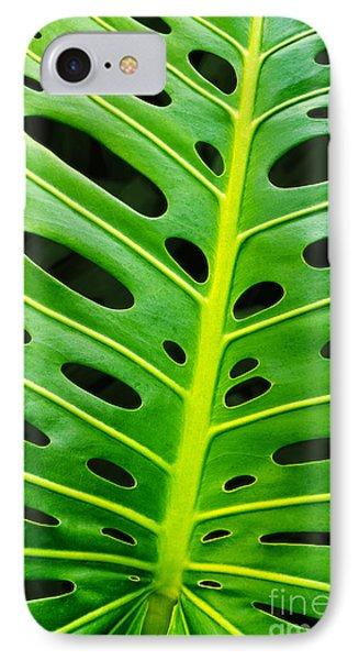Monstera Leaf IPhone Case by Carlos Caetano