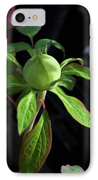 Monstrous Plant Bud Phone Case by Douglas Barnett