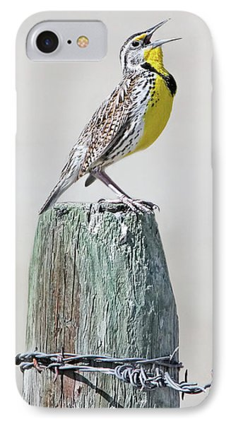 Meadowlark iPhone 7 Case - Montana Meadowlark's Spring Song by Jennie Marie Schell