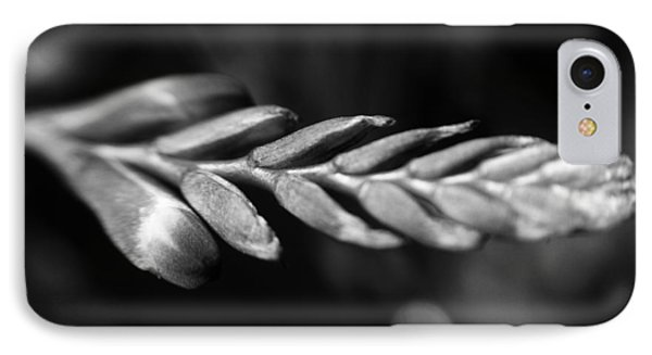 Montbretia  IPhone Case by Keith Elliott