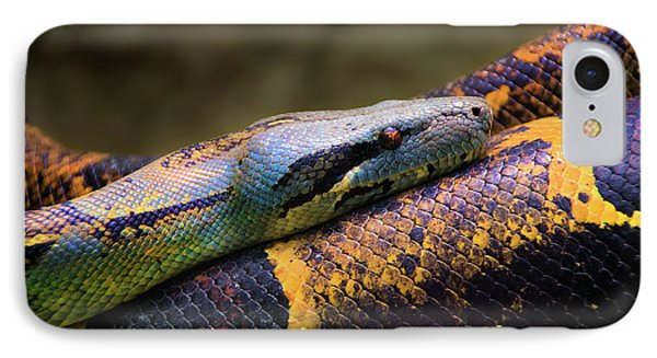 Don't Wear This Boa IPhone Case by Al Bourassa