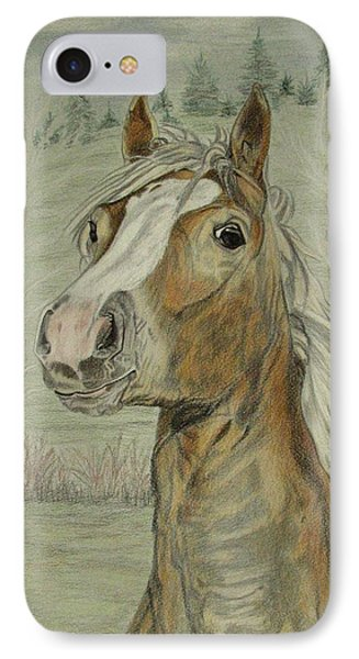IPhone Case featuring the drawing Mony by Melita Safran