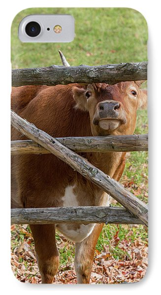 IPhone Case featuring the photograph Moo by Bill Wakeley