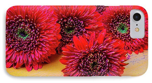 Moody Red Gerbera Dasies Phone Case by Garry Gay