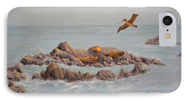 Moonstone Beach Tidepool IPhone Case