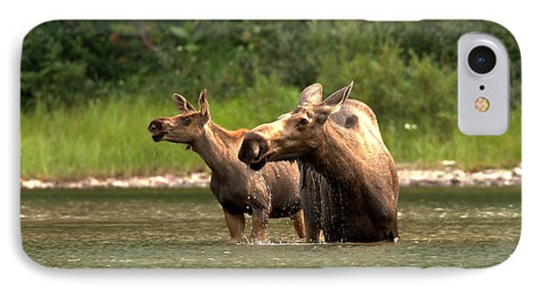 Moose Doubletake IPhone Case