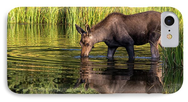 IPhone Case featuring the photograph Moose Reflections by Mary Hone