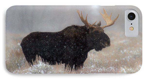 IPhone Case featuring the photograph Moose Winter Silhouette by Adam Jewell