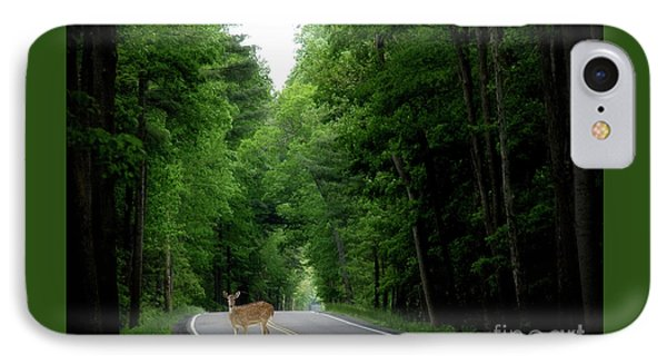 Morning Deer IPhone Case by Anthony Djordjevic