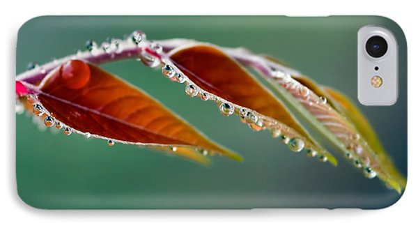 IPhone Case featuring the photograph Morning Dew by Joerg Lingnau