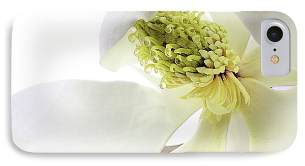 IPhone Case featuring the photograph Morning Dew Magnolia by JC Findley