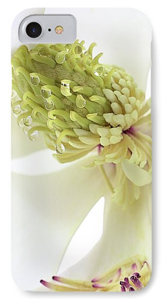 IPhone 7 Case featuring the photograph Morning Dew On The Magnolia by JC Findley