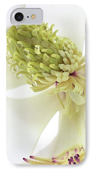 IPhone Case featuring the photograph Morning Dew On The Magnolia by JC Findley