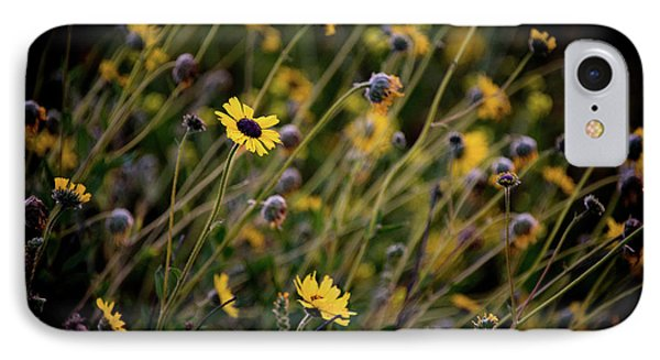 IPhone Case featuring the photograph Morning Flowers by Kelly Wade